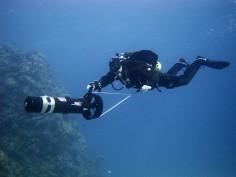어드벤쳐 다이빙 프로그램