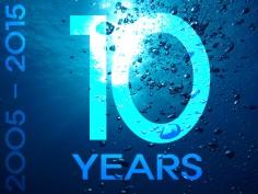 10년간의 경험